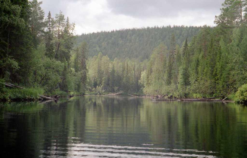 карелия рыбалка на реке кемь